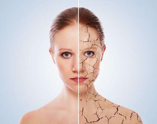 תרופות סבתא לעור פנים יבש.